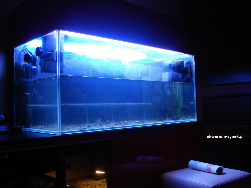 akwarium-420l-synek-25