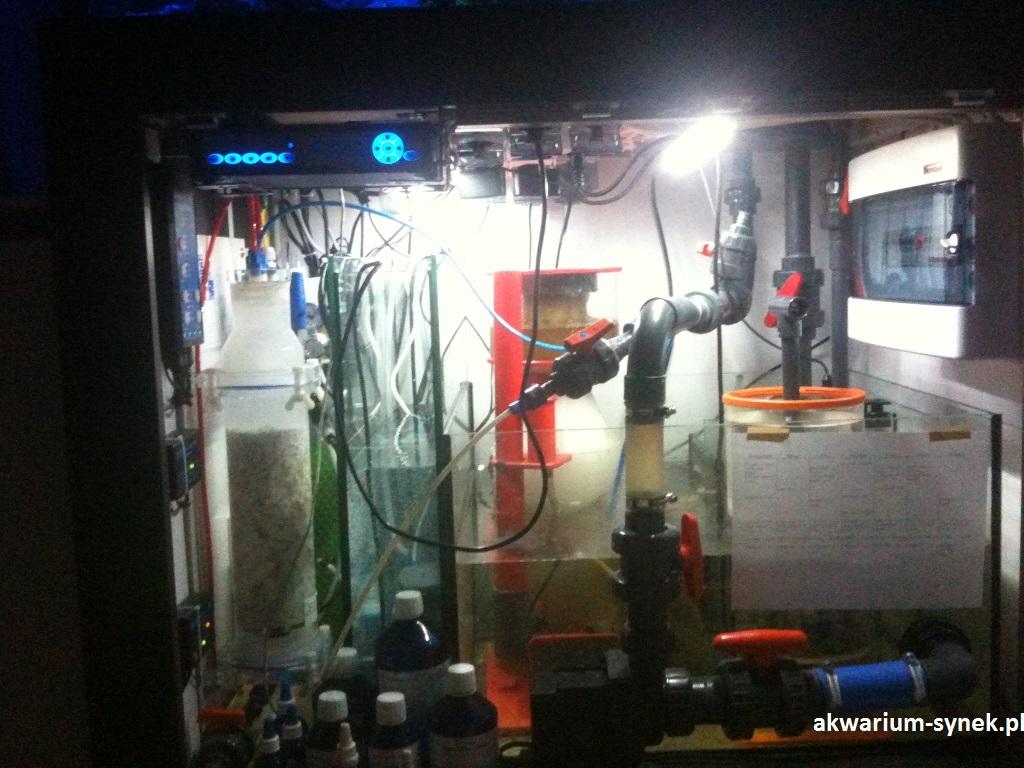 akwarium-460l-synek-29