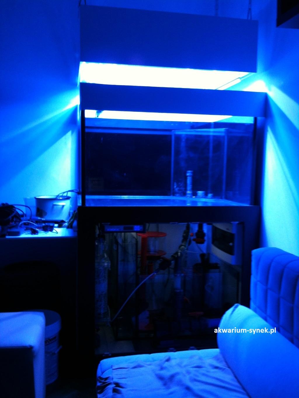 akwarium-460l-synek-36